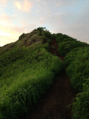 Lanikai Pillbox Trail