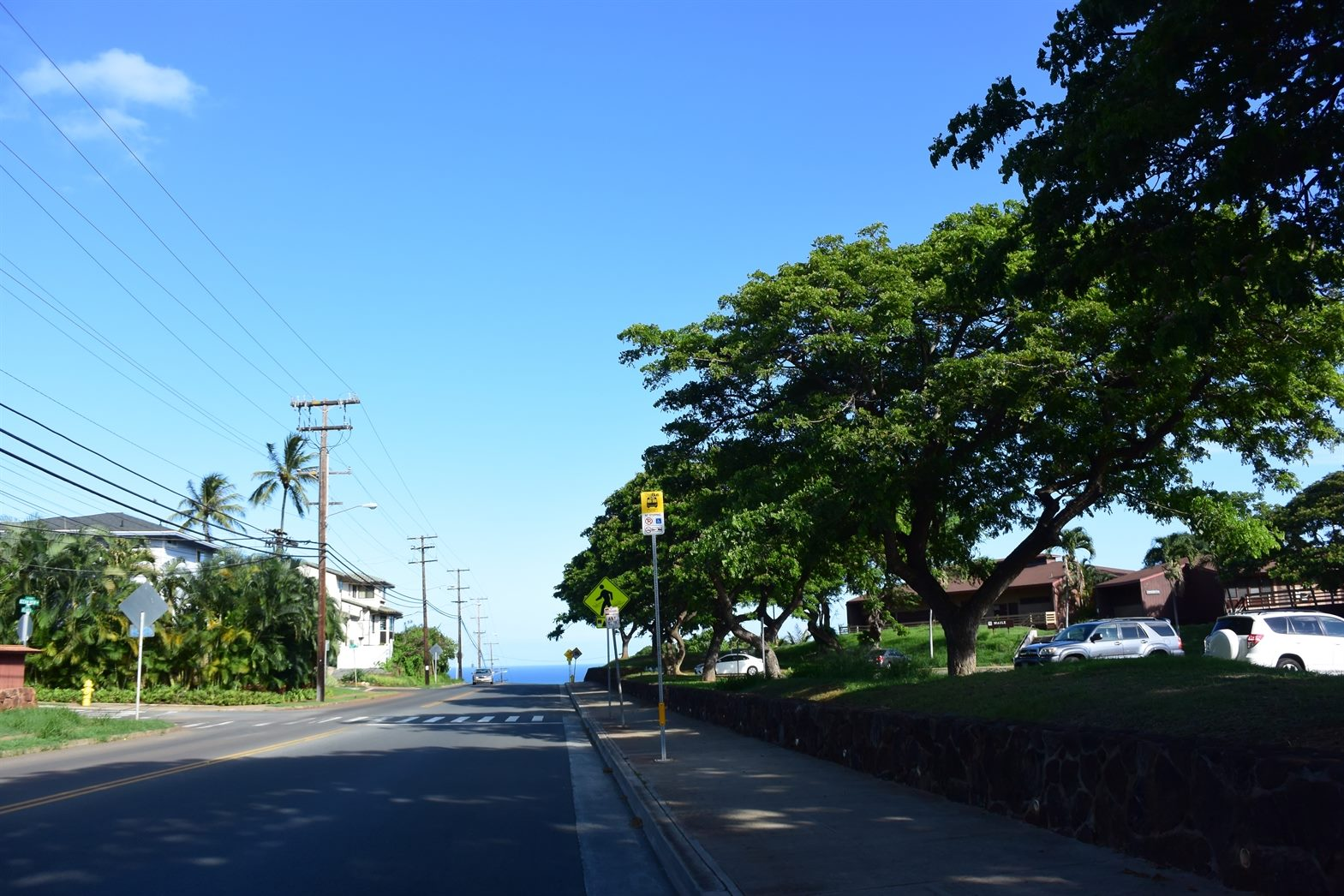 Kilauea Avenueからの絶景