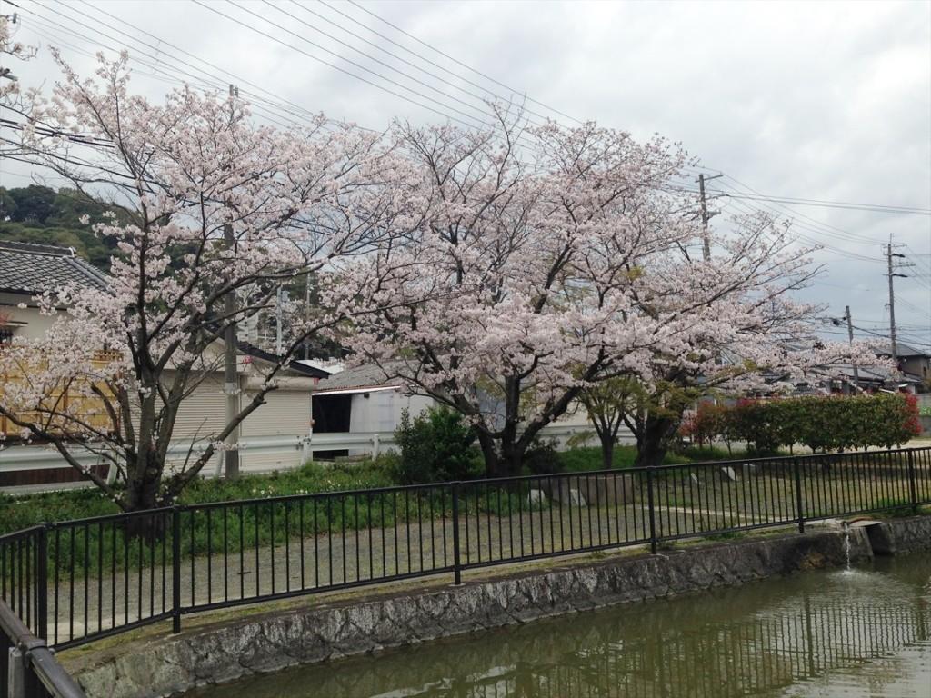 阪南市加茂神社