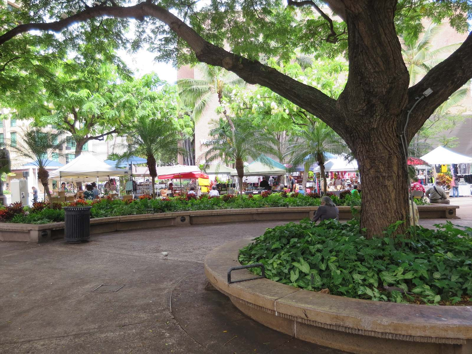 ダウンタウンのローカルファーマーズマーケット Fort Street Farmers Market